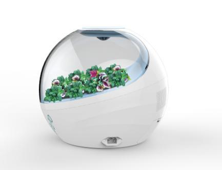 植物生态空气净化器设计