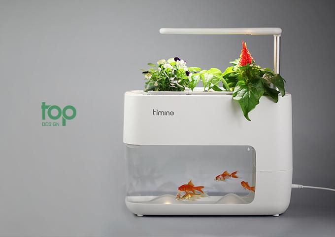 桌面生态鱼缸
